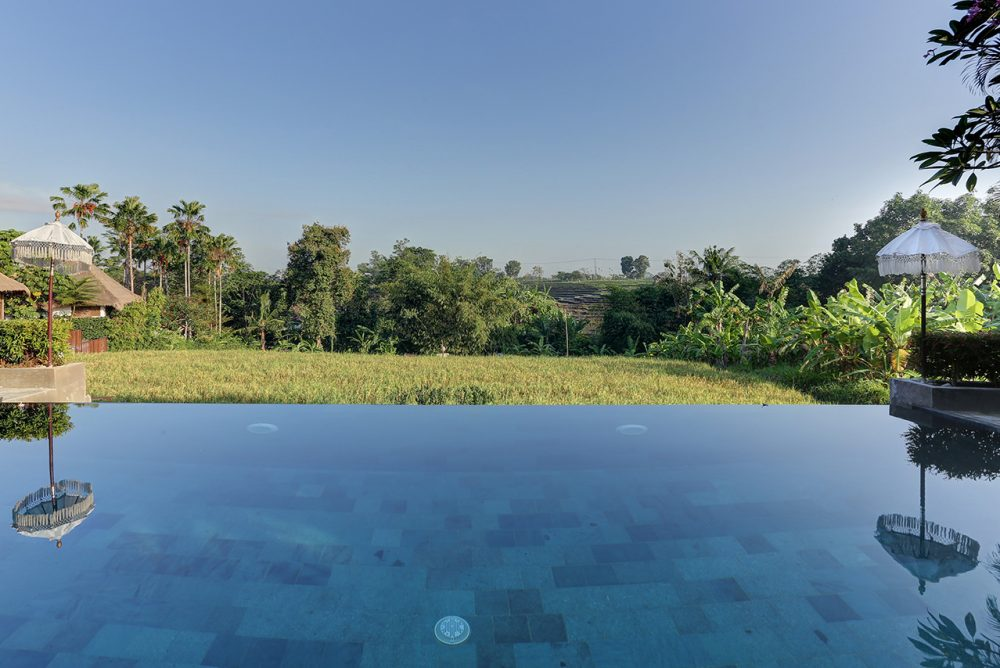 relaxing swimming pool while enjoying the yellowing rice fields