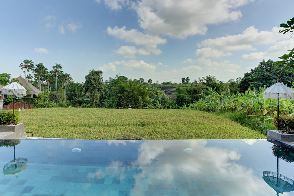 Villa Subak swimming pool with spectacular rice fields view
